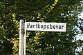 Hückeswagen Hartkopsbever - Hartkopsbever 01 ies.jpg