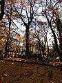 Hřbitov Malvazinky 50.jpg