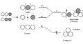 H3 walsh diagram.jpg