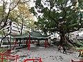 HK 上環 Sheung Wan 荷李活道公園 Hollywood Road Park February 2020 SS2 09.jpg