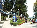 HK OP Sea Jelly 410 Location.jpg