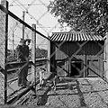 HUA-153303-Afbeelding van de hondenkennel van de spoorwegpolitie bij het N.S.-station Utrecht C.S. te Utrecht.jpg