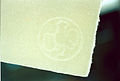Hahnemühle Watermark in mould-made paper.jpg
