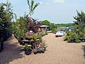 Harborough Nurseries - geograph.org.uk - 456720.jpg