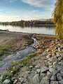 Heidenfahrt Rheinufer 05 11 2015 (1).jpg