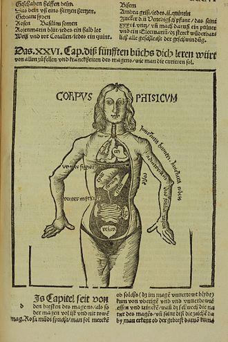 Medieval medicine of Western Europe - Corpus physicum, from Liber de arte Distillandi de Compositis, 1512