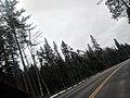 High Ski Jump Platform (45530130135).jpg