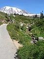 Hiking (67d368a8ee2c414d8d5b0859f716c9ec).JPG