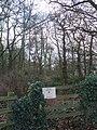 Himley Plantation - geograph.org.uk - 293848.jpg
