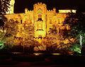 Hluboká nad Vltavou v noci.jpg