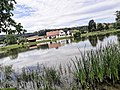 Holašovice, rybník Nekysel.jpg