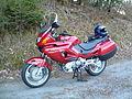 HondaDeauville2003.JPG