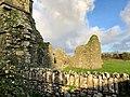 Hore Abbey, Caiseal, Éire - 32711738068.jpg