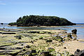 Hoshizuna-no-hama Iriomote Island07bs3s4592.jpg