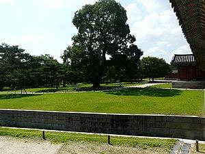 Hyehwa fall 2014 049 (Changgyeonggung).JPG