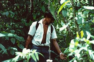 Indigenous and community conserved area - A village association runs an ICCA-based sustainable use enterprise in Costa Rica.