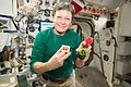 ISS-50 Peggy Whitson with cookies at Christmas Eve.jpg