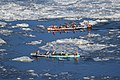 Ice canoeing Quebec 2016 2.JPG