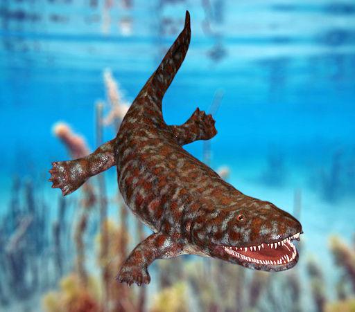 Ichthyostega model