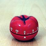 Il pomodoro.jpg