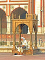 India-0233 - Flickr - archer10 (Dennis).jpg