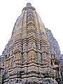 India-5585 - Flickr - archer10 (Dennis).jpg