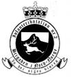Infanteribataljon nr.2.png