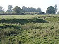 Inside Ring Barrow, Woodcutts Common - geograph.org.uk - 260539.jpg