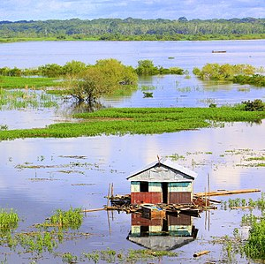 Itaya River - A view of the Itaya River from the city of Iquitos
