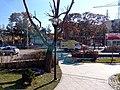 Iran Zamin Park - panoramio (5).jpg