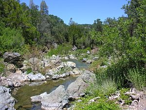 Isabel Creek - Isabel Creek in July 2011, courtesy of Robert A. Leidy PhD, U.S. EPA