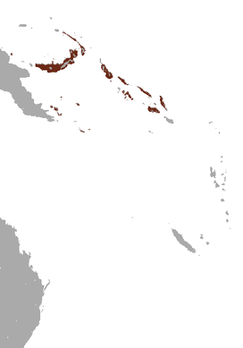 Island Tube-nosed Fruit Bat area.png
