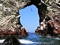 Islas Ballestas - panoramio (10).jpg