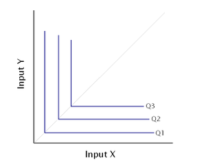 Isoquant - B) Example of an isoquant map with two inputs that are perfect complements.