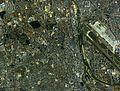 Itami city center area Aerial photograph.1985.jpg