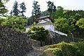 Izushi castle07nt3200.jpg
