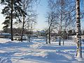 Järvenpää in winter IMG 3223 C.JPG