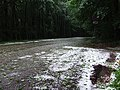 Jég a Mátrában - panoramio.jpg