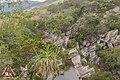 Jaboticatubas - State of Minas Gerais, Brazil - panoramio (30).jpg