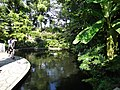 Japanese pond - panoramio.jpg