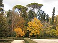 Jardín del Príncipe - panoramio (2).jpg