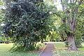 Jardim Botânico Tropical - Lisbon, Portugal - DSC06596.JPG