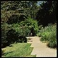 Jardim Gulbenkian, Lisboa, Portugal (3417917022).jpg