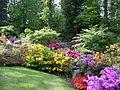 Jardin des rhododendrons.JPG