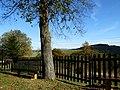 Jeseň na Petrankách - panoramio.jpg