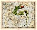 Johannes Hevelius - Draco.jpg