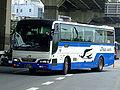 Jrbuskanto-sumpuliner-20070628.jpg