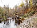 Jyväskylä - Tourujoki trail3.jpg