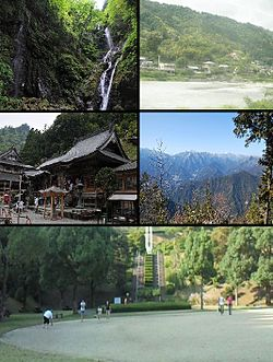 Clockwise from upper left: Amagoi Fall, Akui River, view of Mount Tsurugi from Shōsan Temple, square in Kamiyama Forest Park, Shōsan Temple