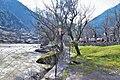 Kashmir580.jpg